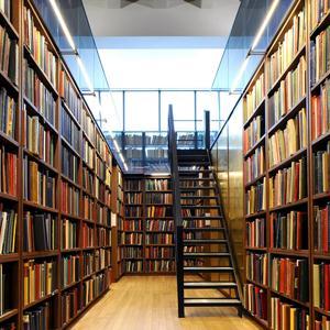 Библиотеки Елатьмы
