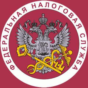 Налоговые инспекции, службы Елатьмы